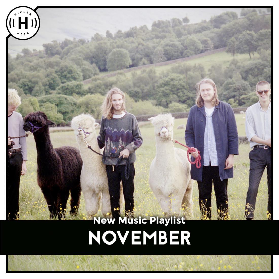 november playlist - hidden herd