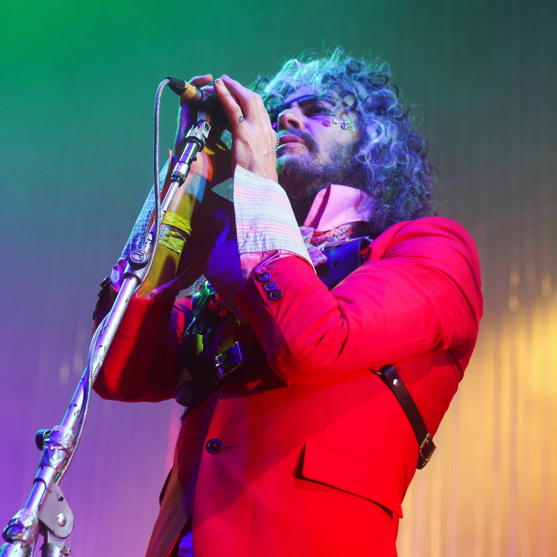 Photo of The Flaming Lips featured on Hidden Herd new music blog